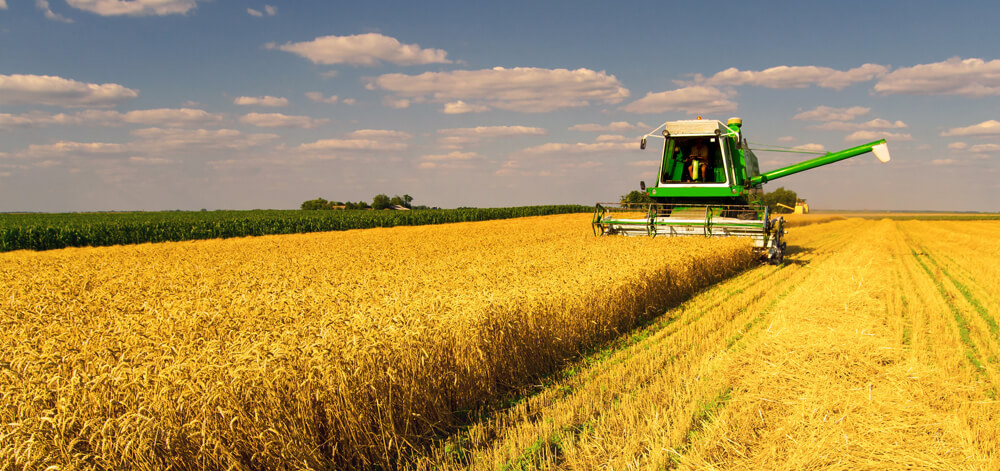 HOW TO PICK THE BEST FINANCE FOR YOUR FARM EQUIPMENT - CASH, LEASE, CHATTEL MORTGAGE, HIRE PURCHASE AND NON-TRADITIONAL LENDING EXPLAINED